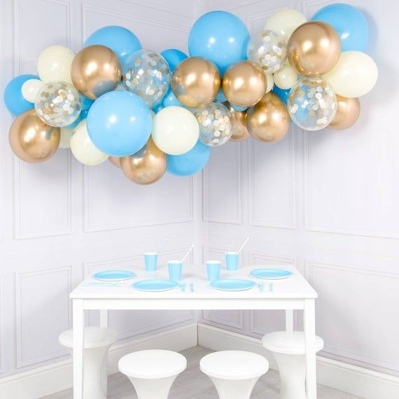 Classic Organic Balloon Party Decorations Singapore