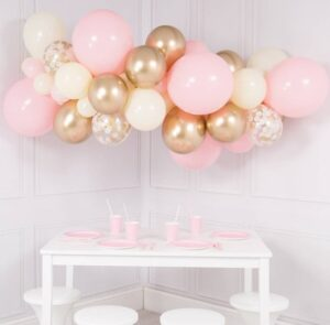Party Organic Balloon Decorations Singapore